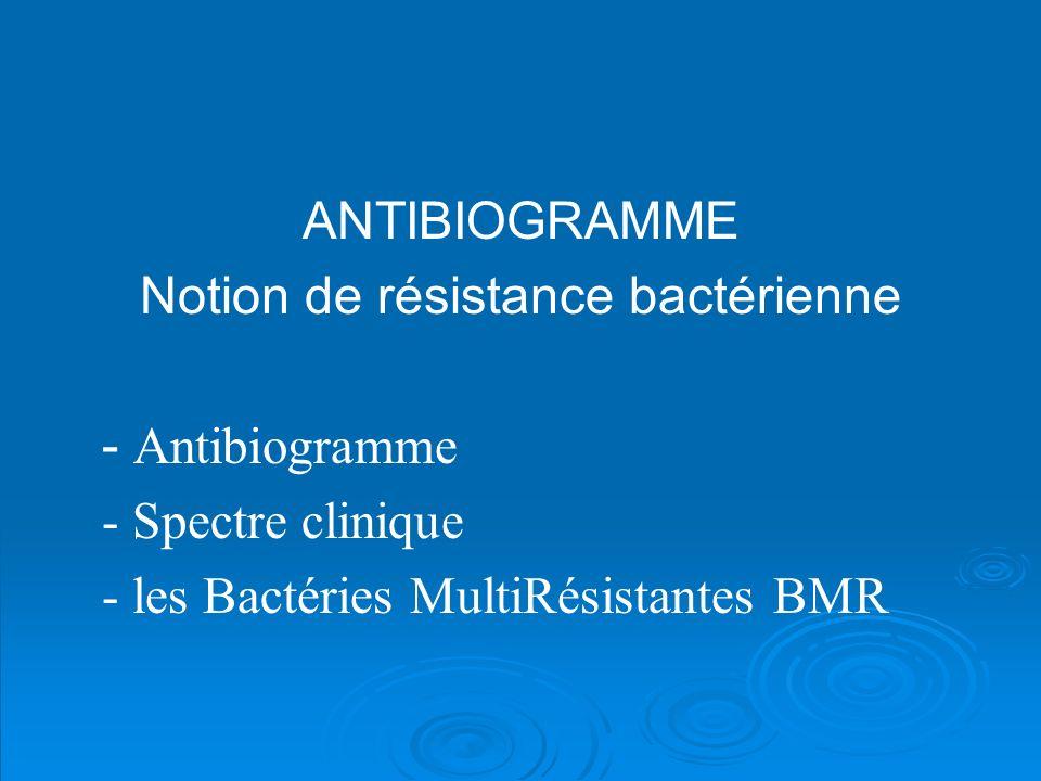 ANTIBIOGRAMME Notion de résistance bactérienne - Antibiogramme - Spectre clinique - les Bactéries MultiRésistantes BMR
