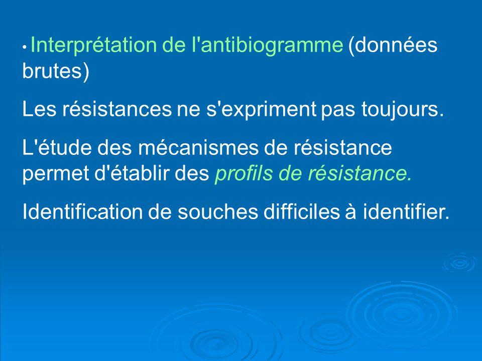 Interprétation de l'antibiogramme (données brutes) Les résistances ne s'expriment pas toujours. L'étude des mécanismes de résistance permet d'établir