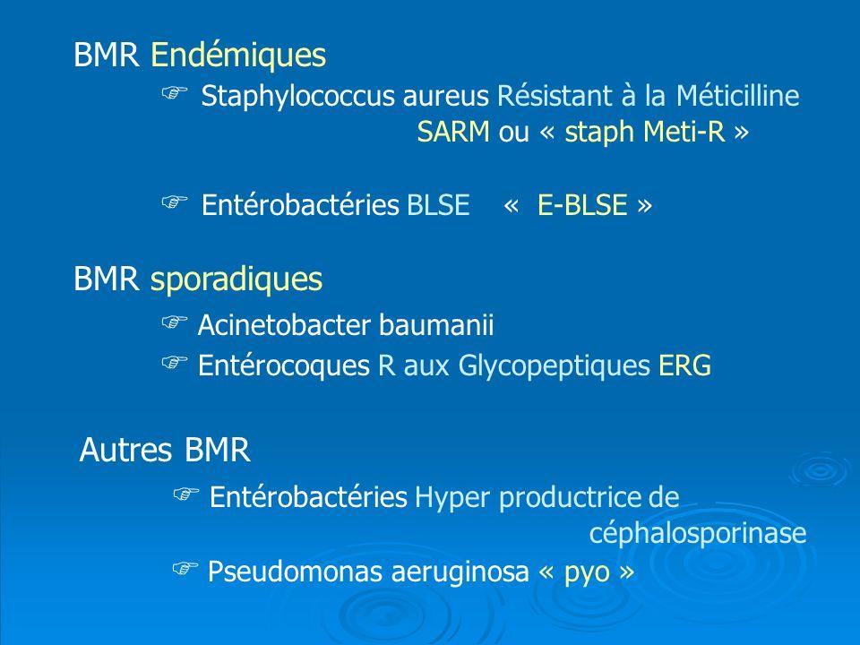 BMR Endémiques Staphylococcus aureus Résistant à la Méticilline SARM ou « staph Meti-R » Entérobactéries BLSE« E-BLSE » BMR sporadiques Acinetobacter