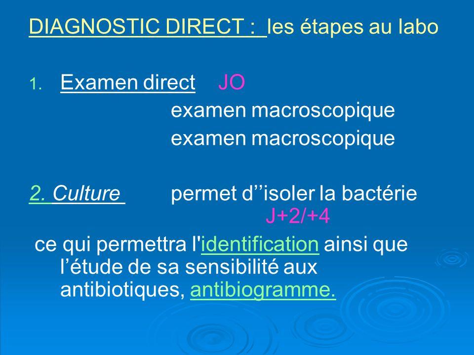 France Consommation dantibiotique élevée en France… à lhôpital aussi