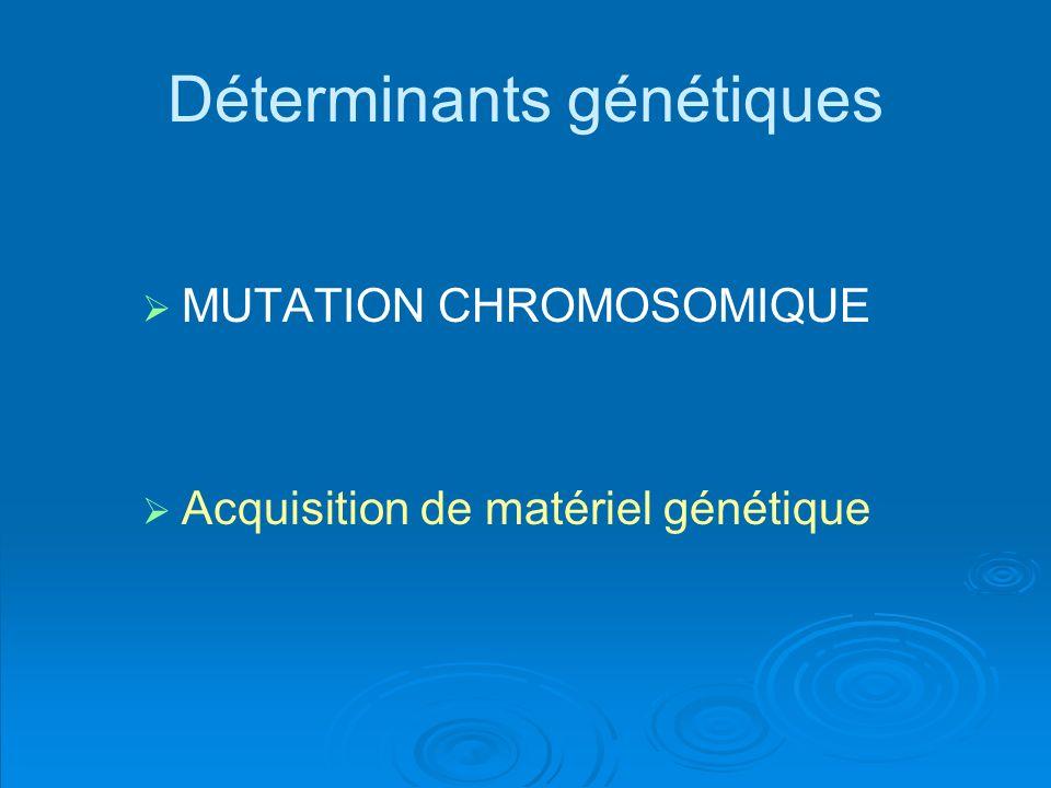 Déterminants génétiques MUTATION CHROMOSOMIQUE Acquisition de matériel génétique