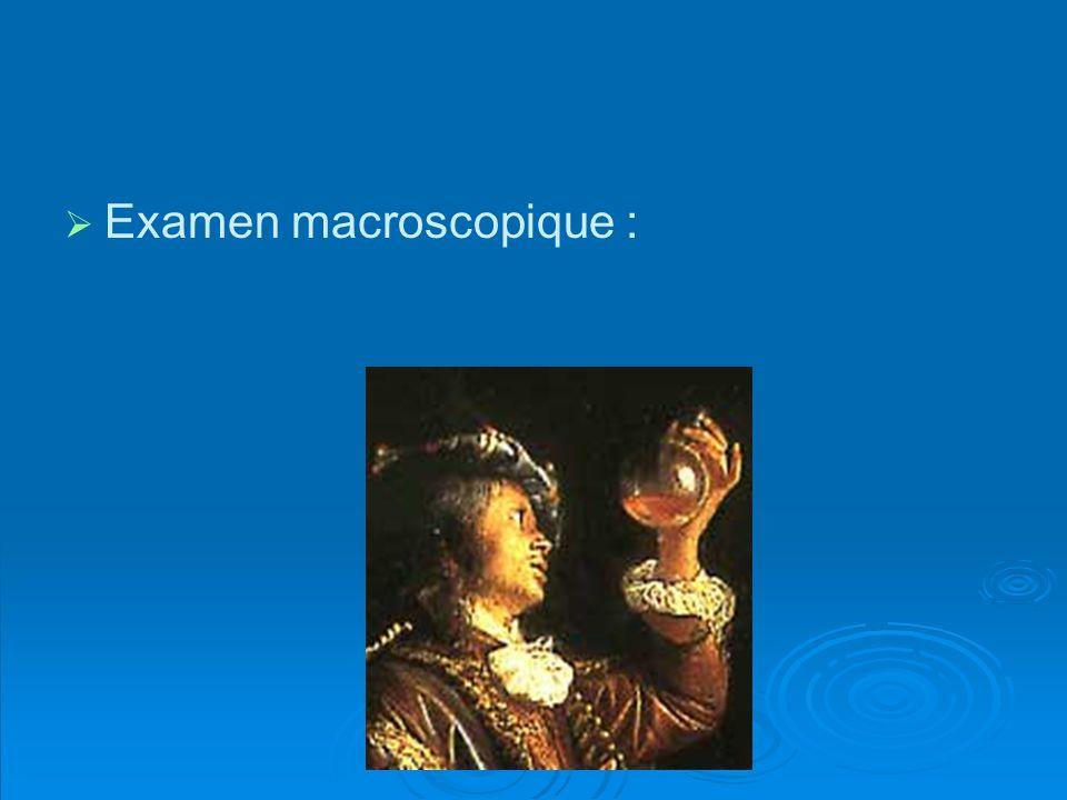 Examen macroscopique :
