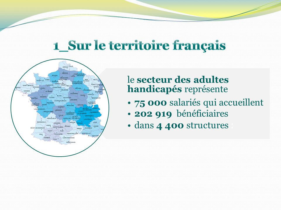 Les structures autorisées sont au 1er janvier 2010, au nombre de 21 structures pour les adultes handicapés.