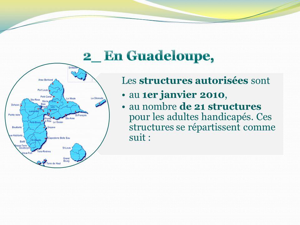 Les structures autorisées sont au 1er janvier 2010, au nombre de 21 structures pour les adultes handicapés. Ces structures se répartissent comme suit