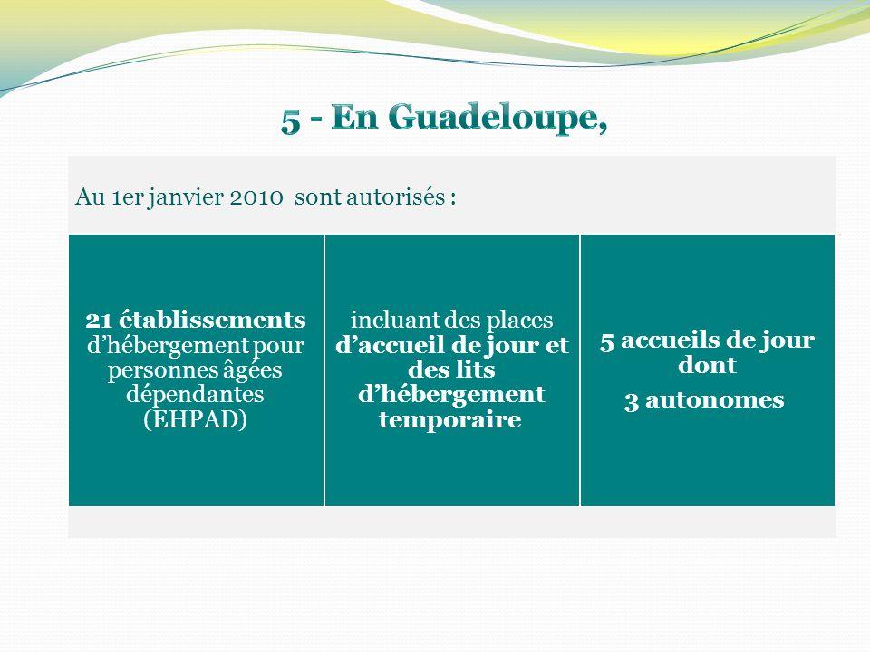 Au 1er janvier 2010 sont autorisés : 21 établissements dhébergement pour personnes âgées dépendantes (EHPAD) incluant des places daccueil de jour et des lits dhébergement temporaire 5 accueils de jour dont 3 autonomes