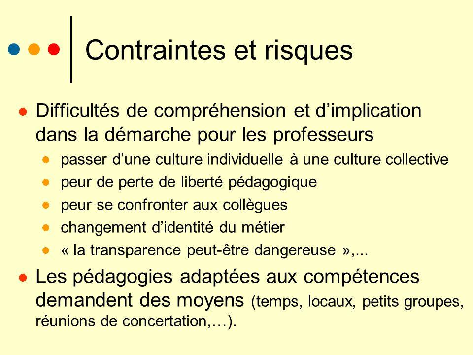 Contraintes et risques Difficultés de compréhension et dimplication dans la démarche pour les professeurs passer dune culture individuelle à une cultu
