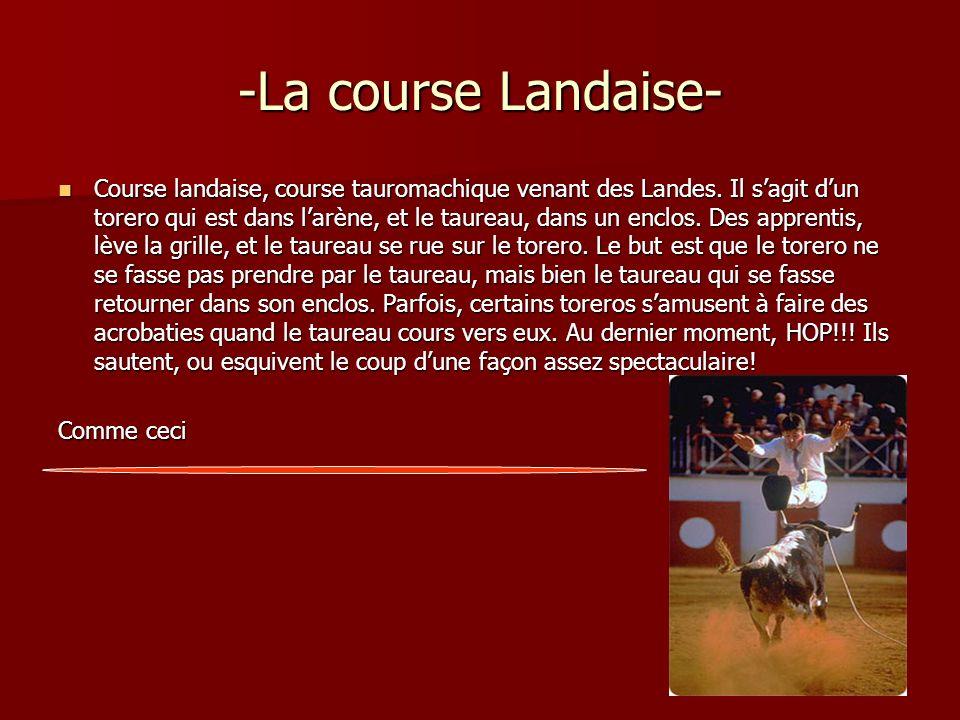 -La course Landaise- Course landaise, course tauromachique venant des Landes. Il sagit dun torero qui est dans larène, et le taureau, dans un enclos.