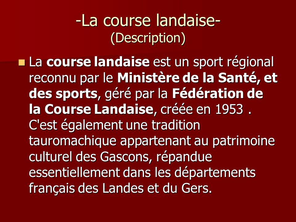 -La course landaise- (Description) La course landaise est un sport régional reconnu par le Ministère de la Santé, et des sports, géré par la Fédératio