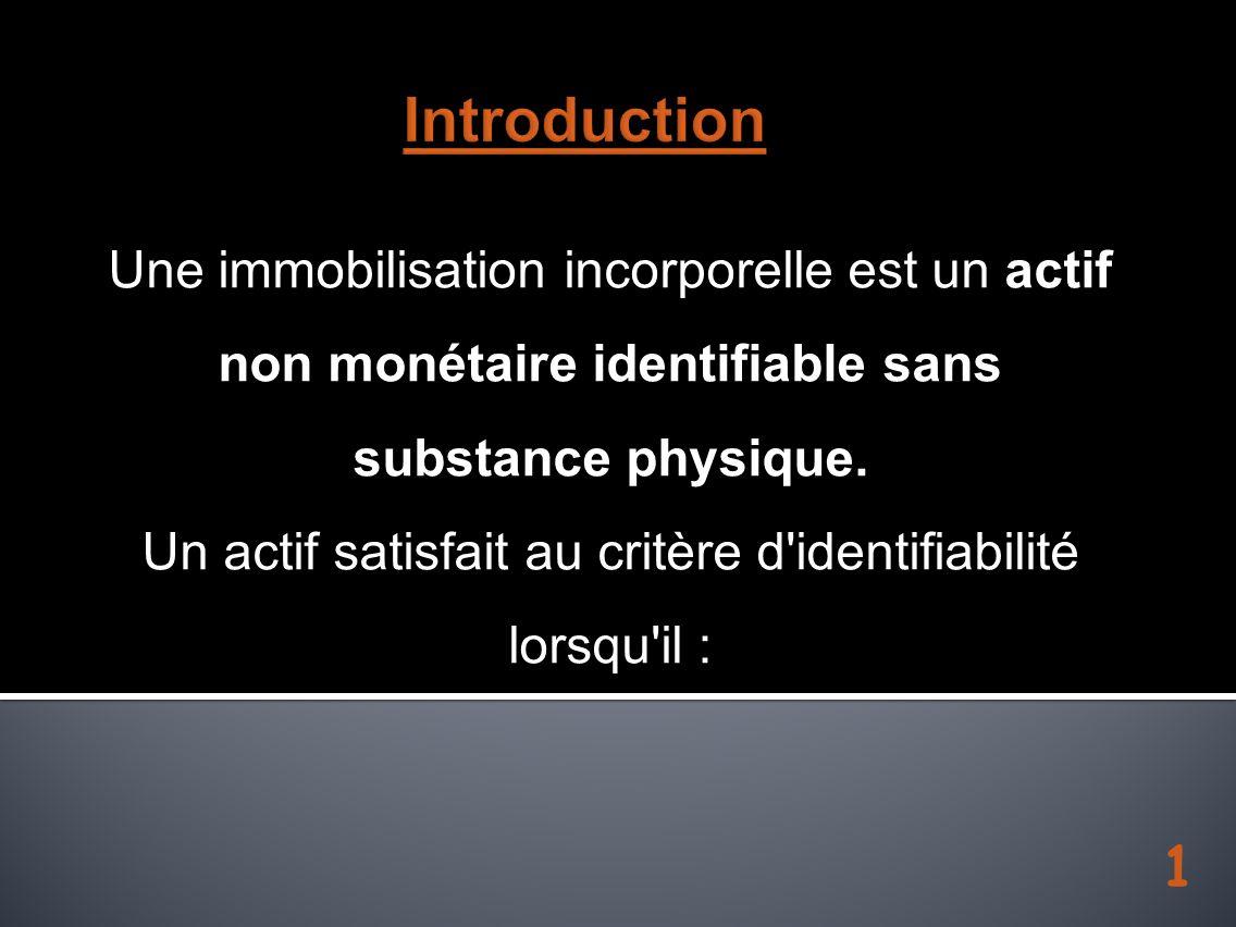 1 Une immobilisation incorporelle est un actif non monétaire identifiable sans substance physique. Un actif satisfait au critère d'identifiabilité lor