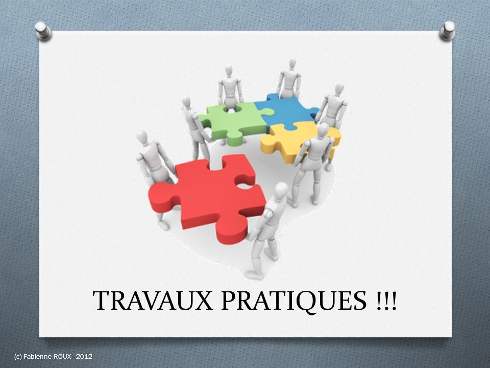 TRAVAUX PRATIQUES !!! (c) Fabienne ROUX - 2012