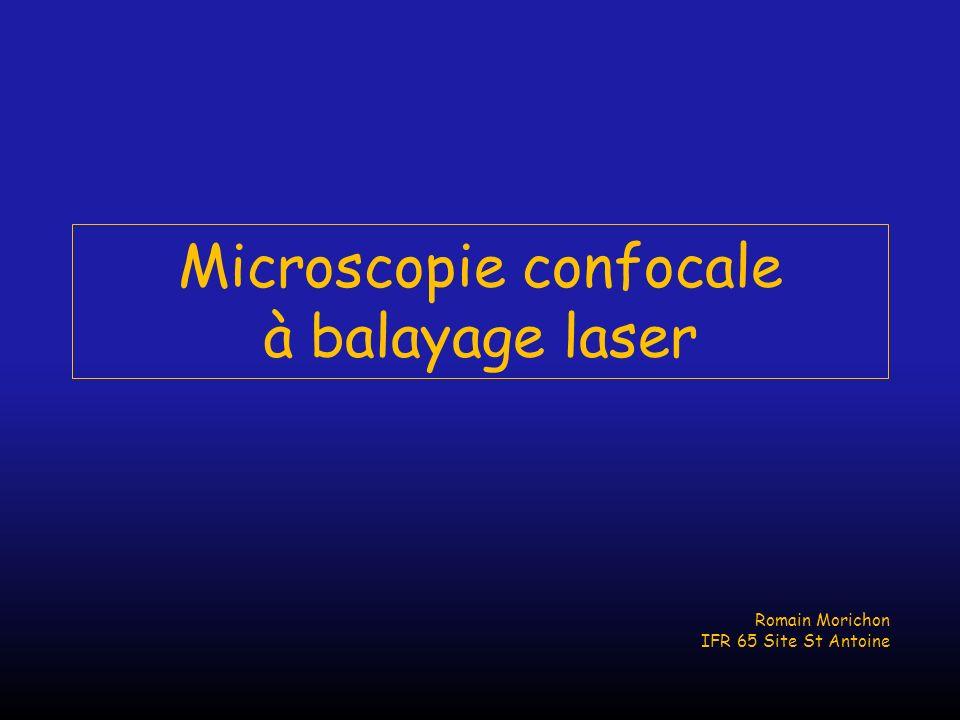 Microscopie confocale à balayage laser Romain Morichon IFR 65 Site St Antoine