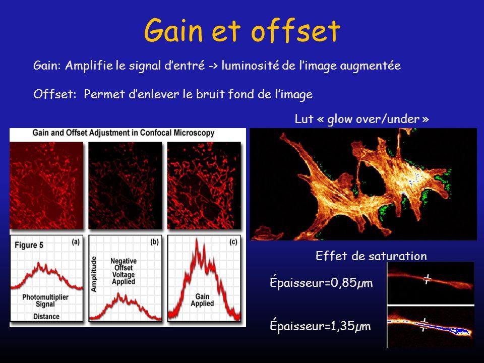 Gain et offset Gain: Amplifie le signal dentré -> luminosité de limage augmentée Offset: Permet denlever le bruit fond de limage Effet de saturation É