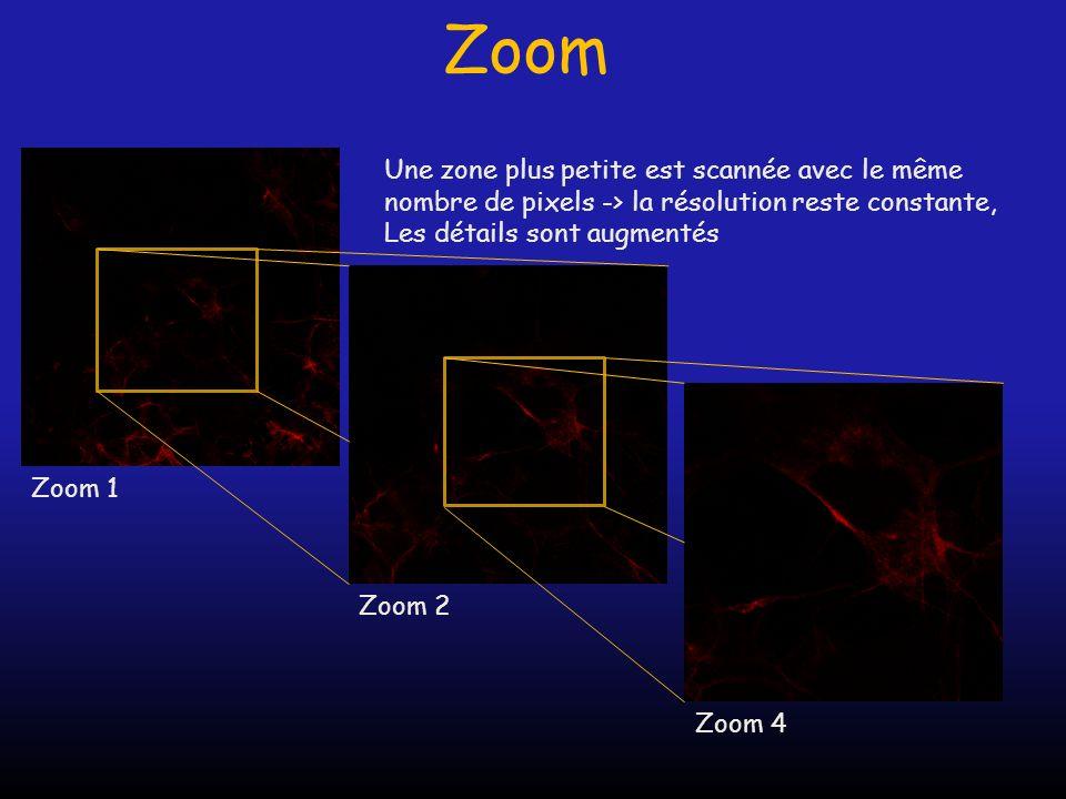 Zoom Zoom 1 Zoom 2 Zoom 4 Une zone plus petite est scannée avec le même nombre de pixels -> la résolution reste constante, Les détails sont augmentés