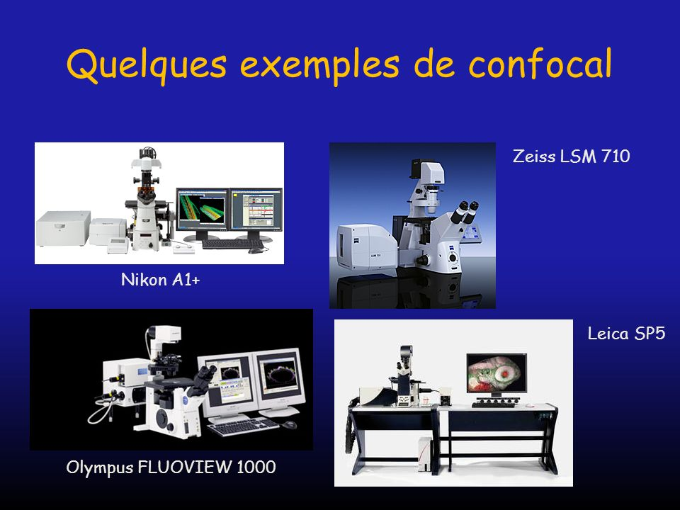Préservation échantillon RésolutionRapiditéMulticouleurs Échantillon épais Microscope confocal -++- + Microscope Biphoton ++ -+ Spinning disk+++ ++ Apotome-+-++ Vidéo microscope +++ ++