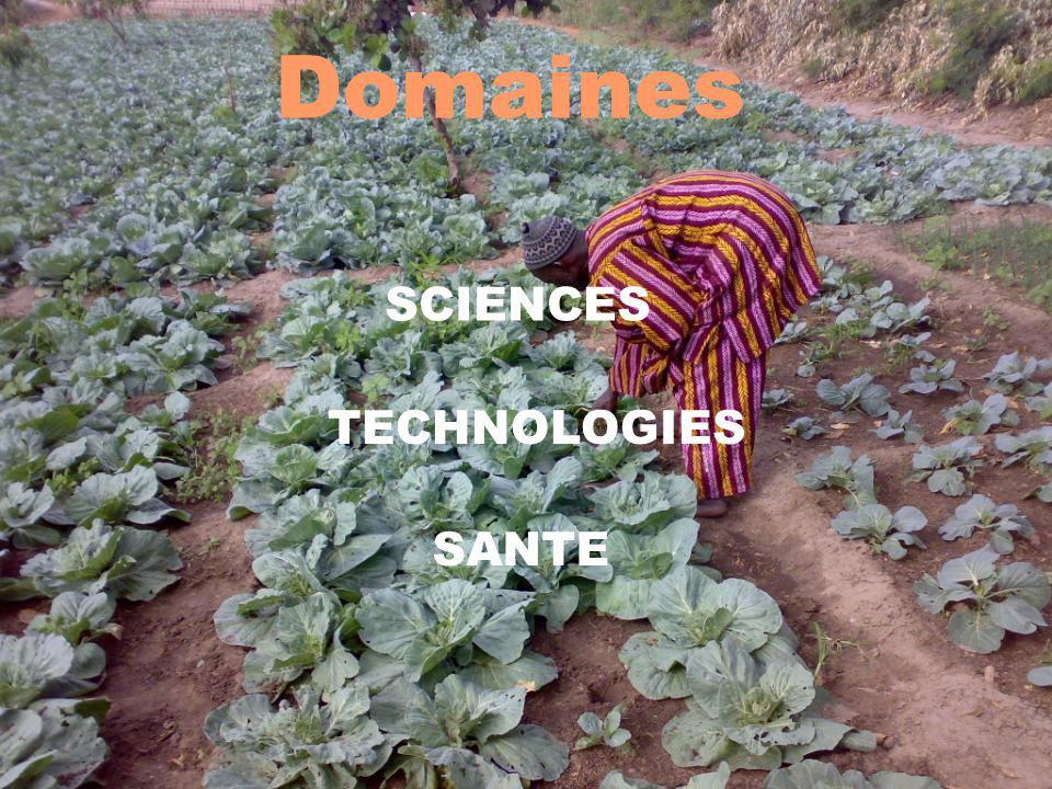 Conditions daccès 2 13 FORMATION CONTINUE Master 2 uniquement: Les salariés des secteurs de la production agricole, ainsi que les fonctionnaires de ladministration, dans le cadre du plan de formation de leur entreprise ou en Congé Individuel de Formation sont ciblés.