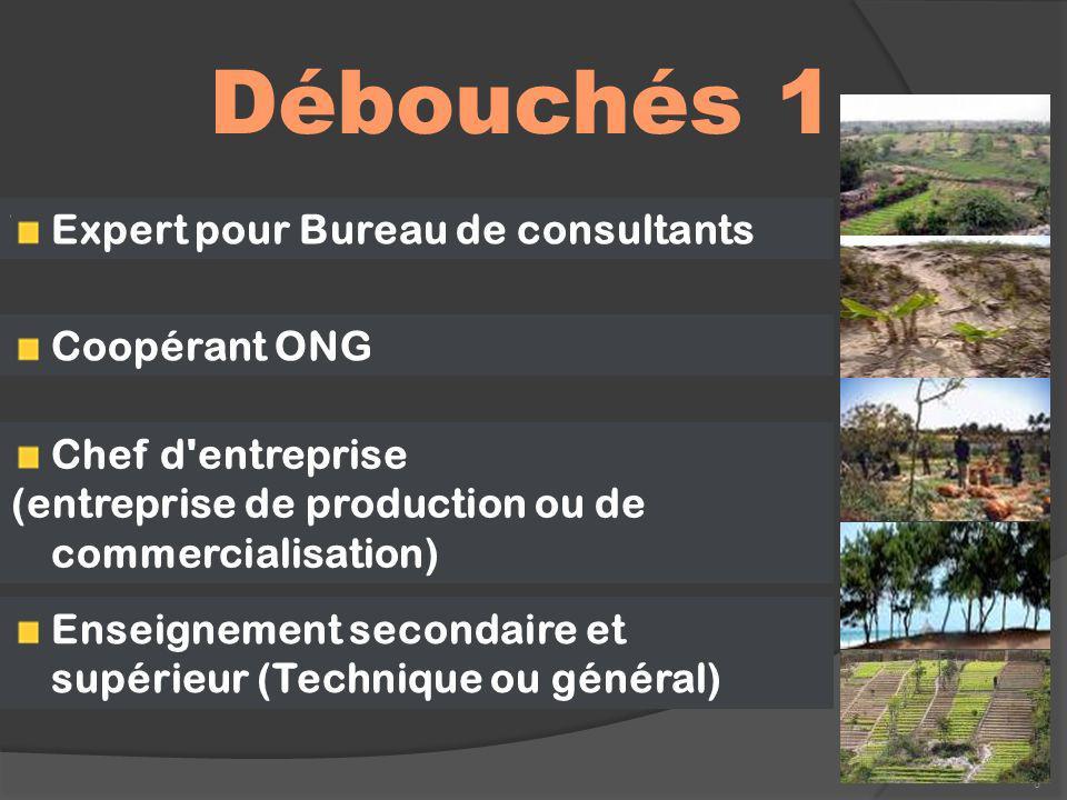 Débouchés 1 8 Expert pour Bureau de consultants Coopérant ONG Chef d'entreprise (entreprise de production ou de commercialisation) Enseignement second