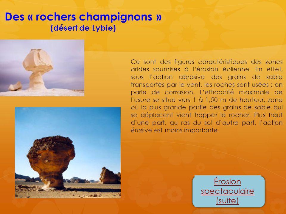 Des « rochers champignons » (désert de Lybie) Érosion spectaculaire (suite) Ce sont des figures caractéristiques des zones arides soumises à lérosion