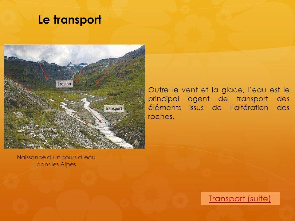 Le transport Outre le vent et la glace, leau est le principal agent de transport des éléments issus de laltération des roches. Naissance dun cours dea