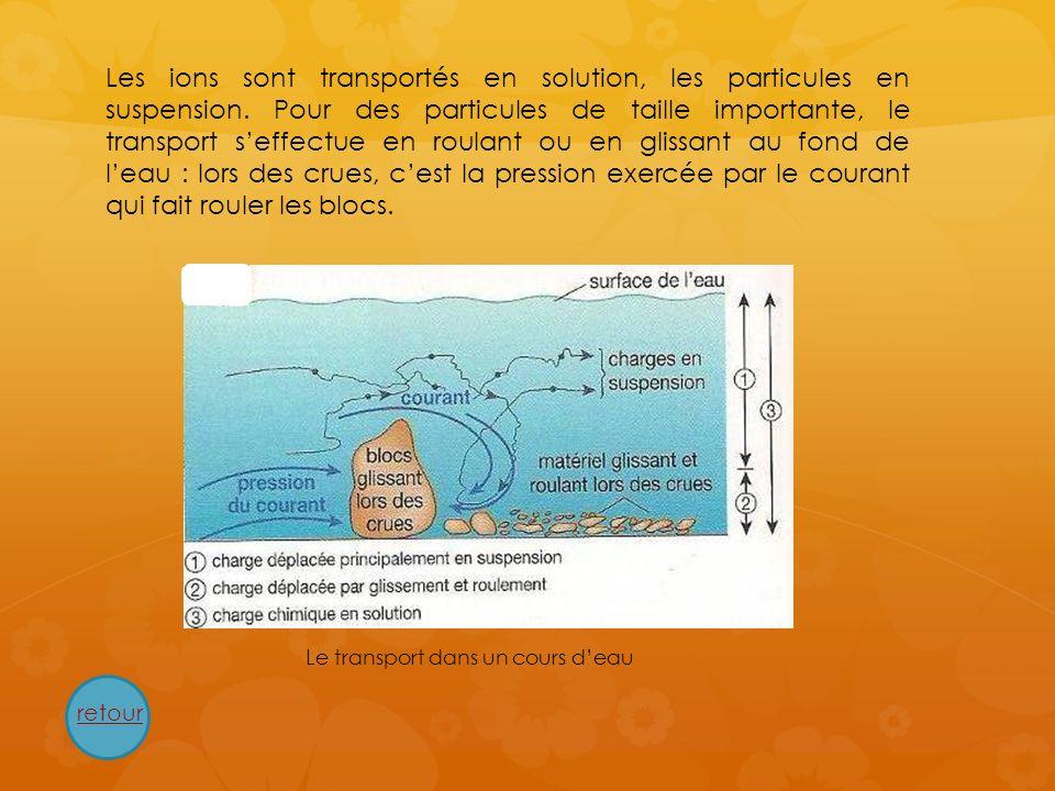 Les ions sont transportés en solution, les particules en suspension. Pour des particules de taille importante, le transport seffectue en roulant ou en