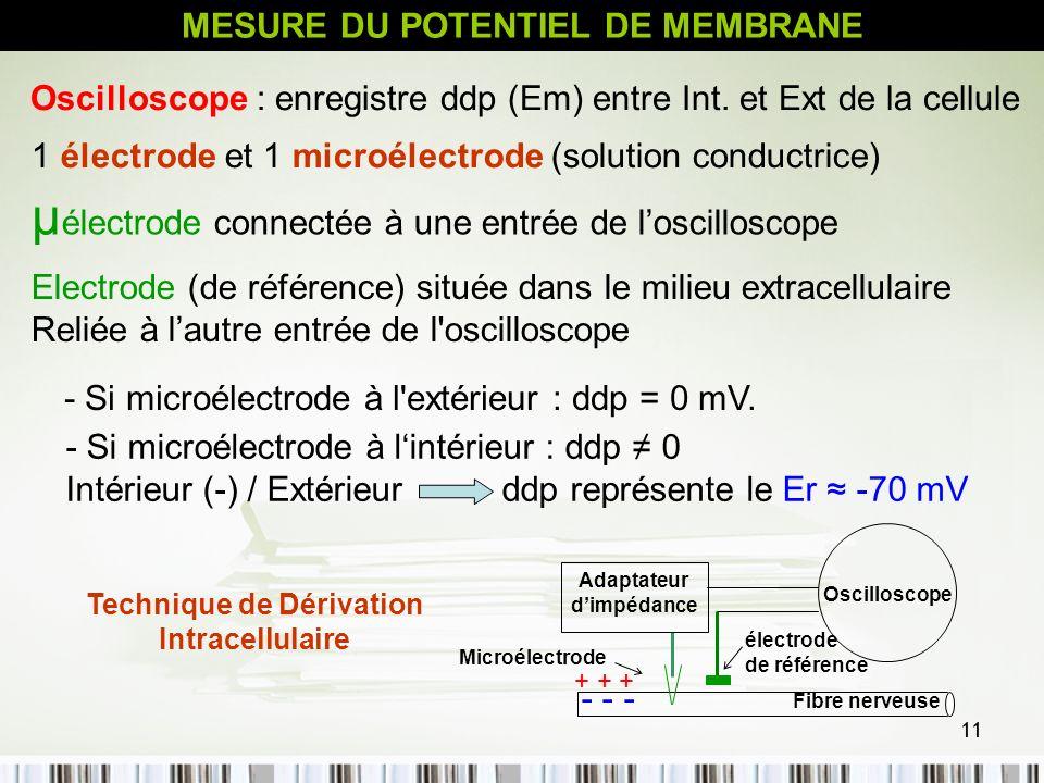 11 - Si microélectrode à l'extérieur : ddp = 0 mV. MESURE DU POTENTIEL DE MEMBRANE 1 électrode et 1 microélectrode (solution conductrice) µ électrode