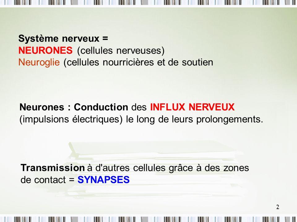 2 Système nerveux = NEURONES (cellules nerveuses) Neuroglie (cellules nourricières et de soutien Neurones : Conduction des INFLUX NERVEUX (impulsions