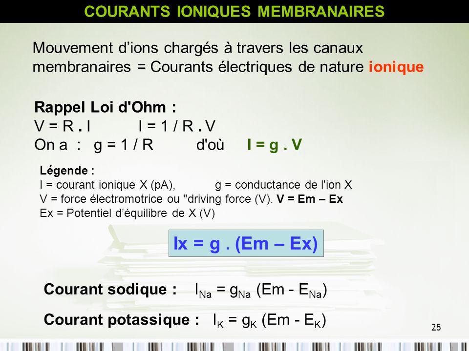 25 Courant potassique : I K = g K (Em - E K ) COURANTS IONIQUES MEMBRANAIRES Mouvement dions chargés à travers les canaux membranaires = Courants élec