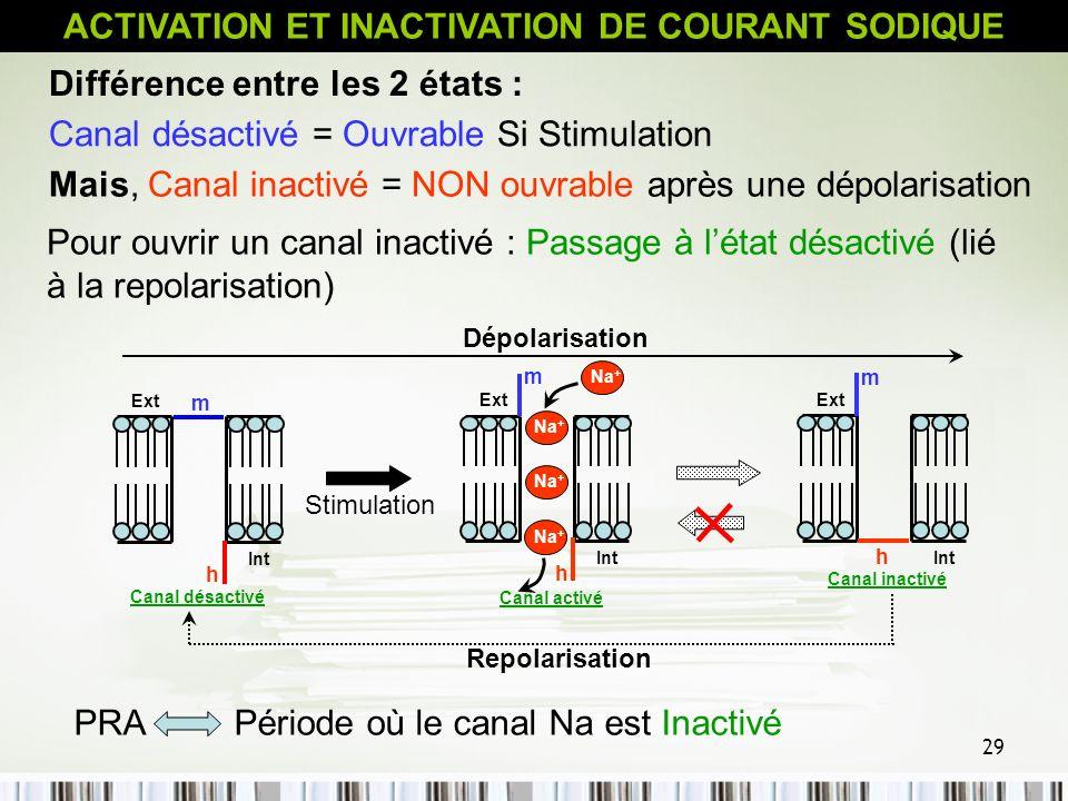 29 Pour ouvrir un canal inactivé : Passage à létat désactivé (lié à la repolarisation) Différence entre les 2 états : Canal désactivé = Ouvrable Si St
