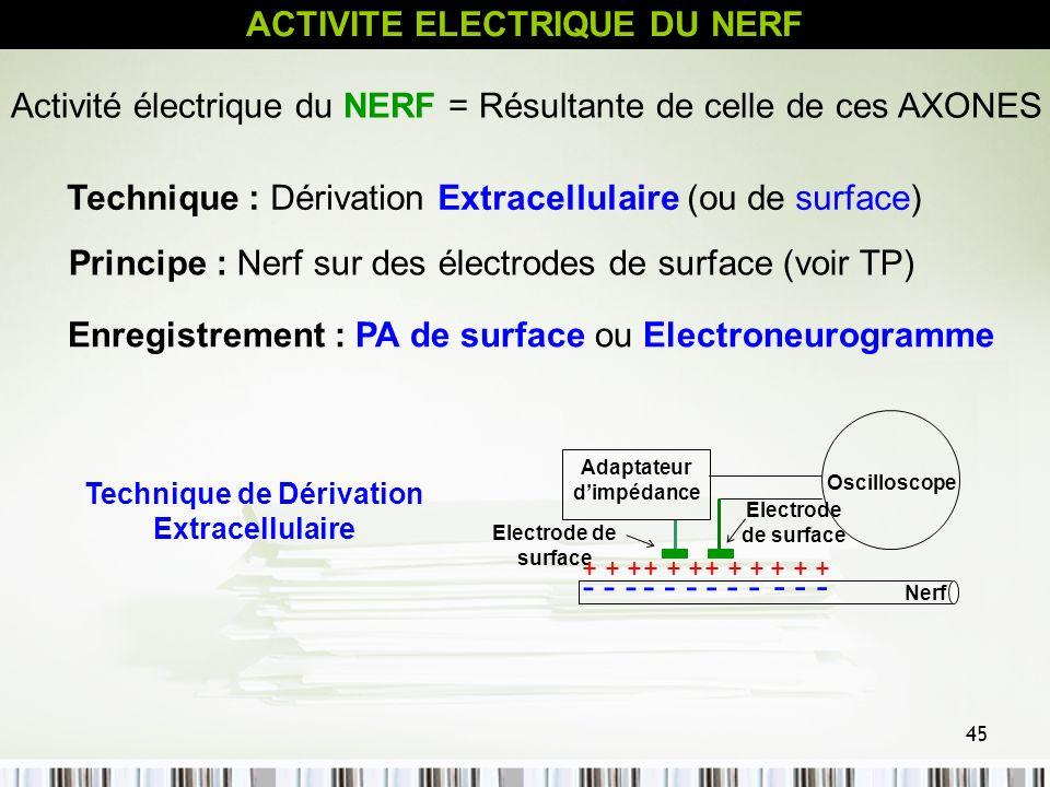 45 ACTIVITE ELECTRIQUE DU NERF Activité électrique du NERF = Résultante de celle de ces AXONES Technique : Dérivation Extracellulaire (ou de surface)