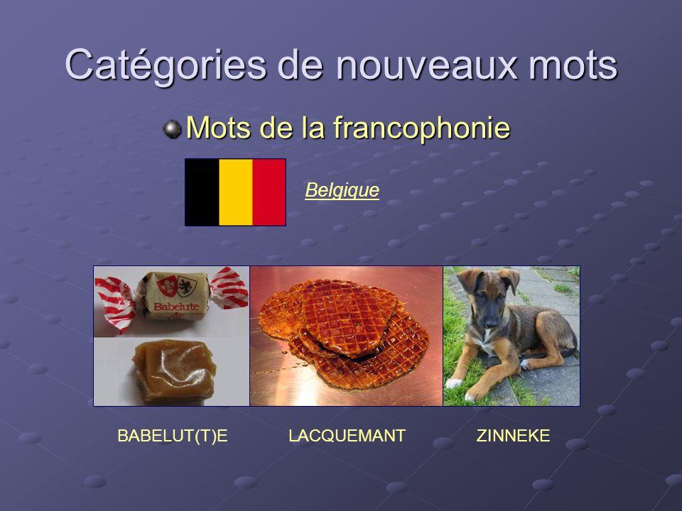 Catégories de nouveaux mots Mots de la francophonie BABELUT(T)EZINNEKE Belgique LACQUEMANT