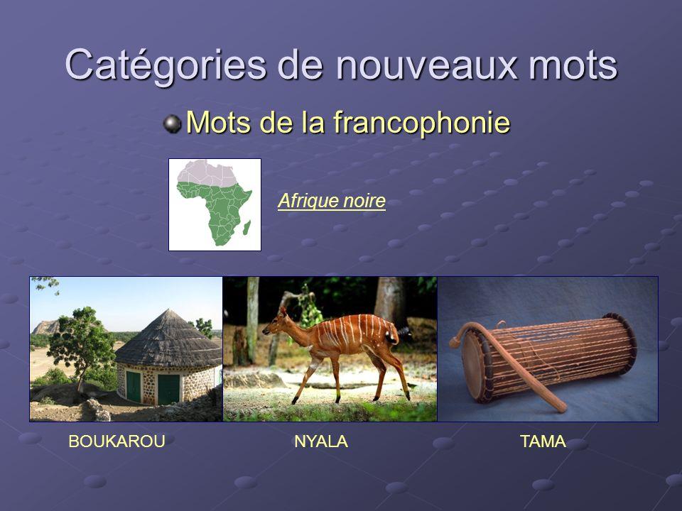 Catégories de nouveaux mots Mots de la francophonie NYALABOUKAROUTAMA Afrique noire
