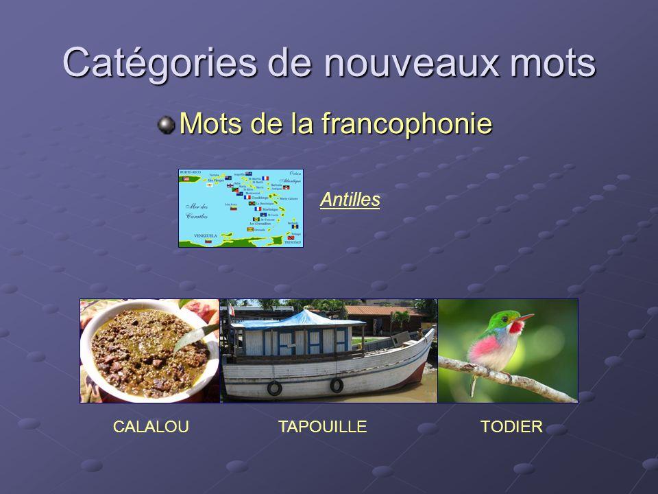 Catégories de nouveaux mots Mots de la francophonie TAPOUILLECALALOUTODIER Antilles