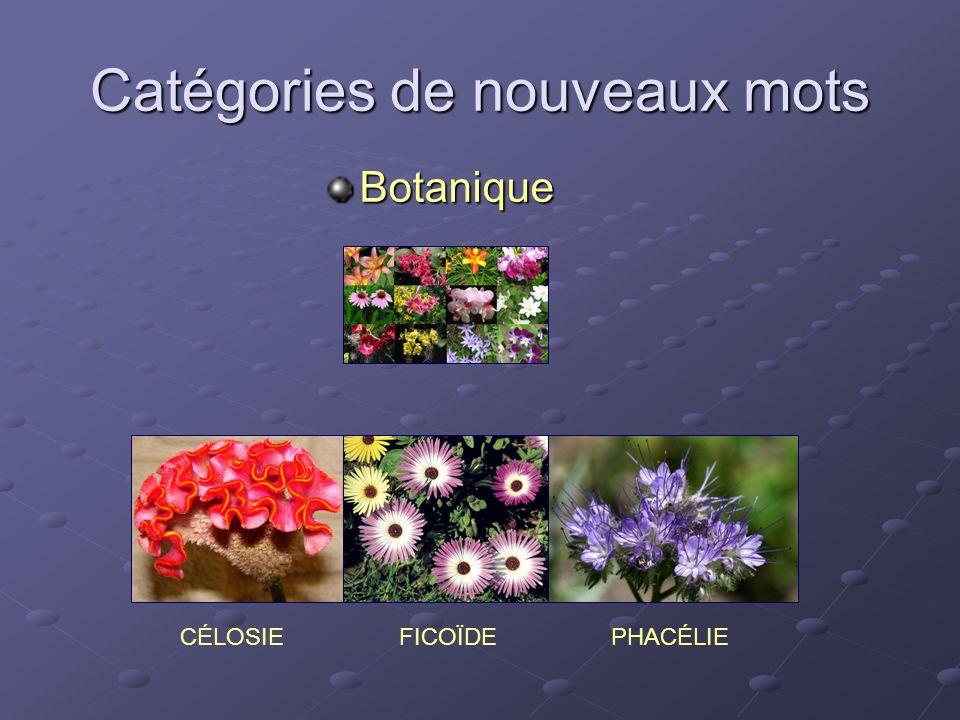 Catégories de nouveaux mots Botanique CÉLOSIEPHACÉLIEFICOÏDE