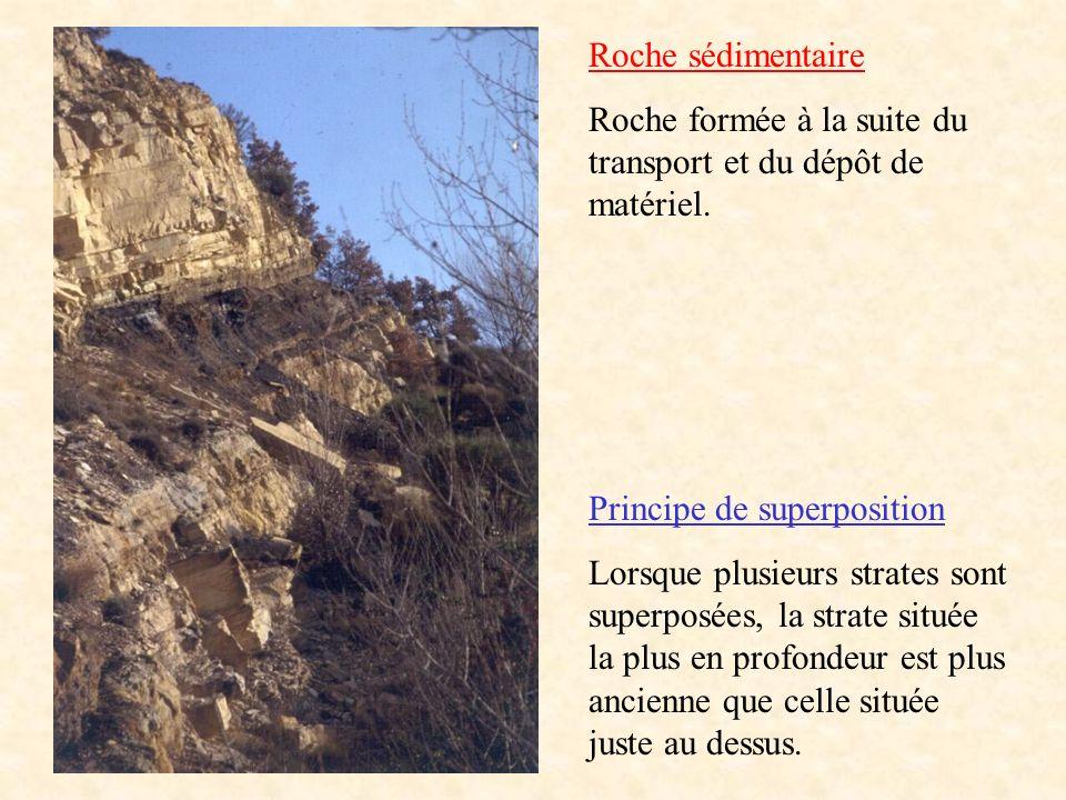 Roche sédimentaire Roche formée à la suite du transport et du dépôt de matériel. Principe de superposition Lorsque plusieurs strates sont superposées,