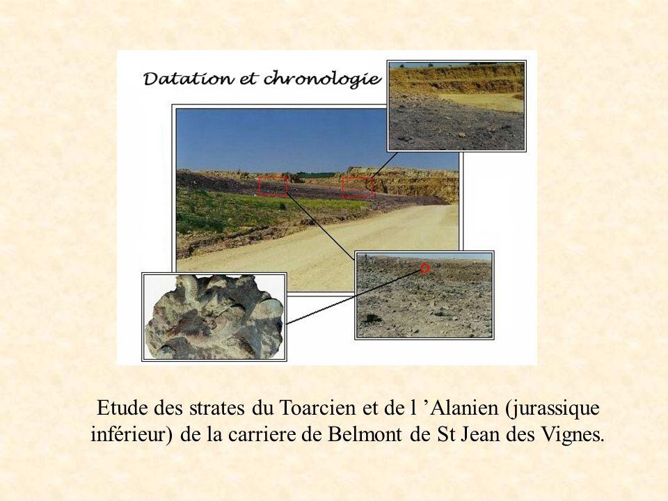 Etude des strates du Toarcien et de l Alanien (jurassique inférieur) de la carriere de Belmont de St Jean des Vignes.