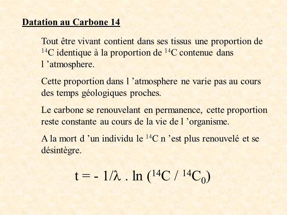 Datation au Carbone 14 Tout être vivant contient dans ses tissus une proportion de 14 C identique à la proportion de 14 C contenue dans l atmosphere.