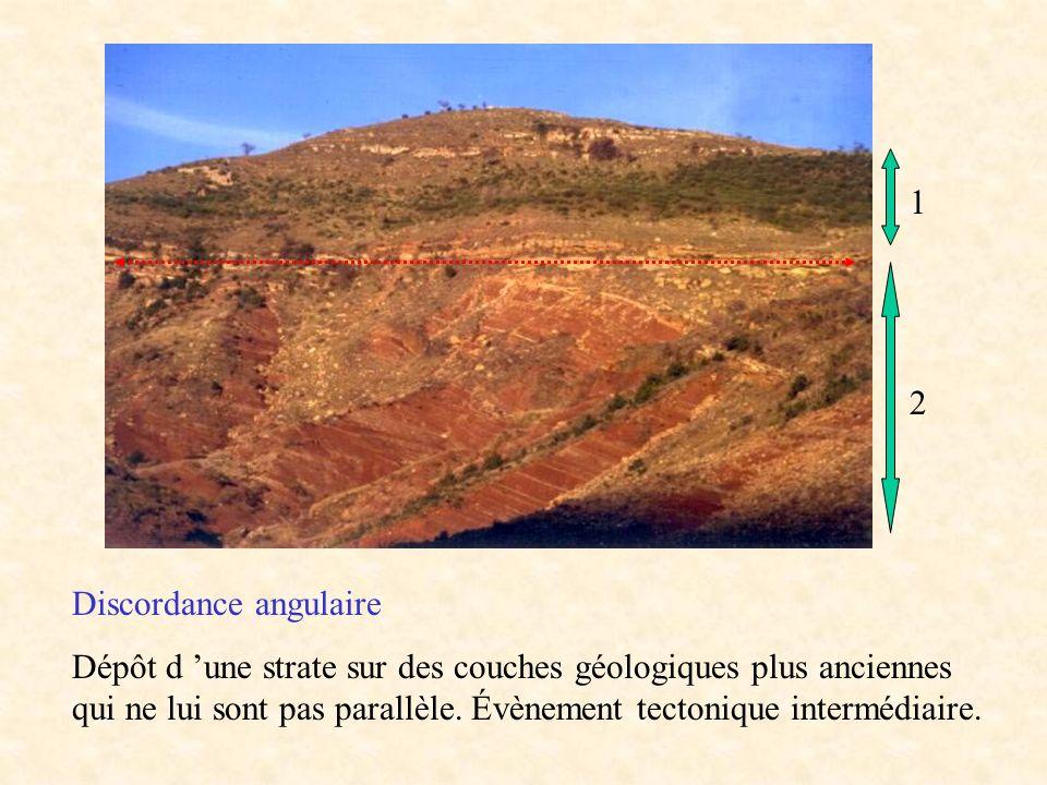 Discordance angulaire Dépôt d une strate sur des couches géologiques plus anciennes qui ne lui sont pas parallèle. Évènement tectonique intermédiaire.