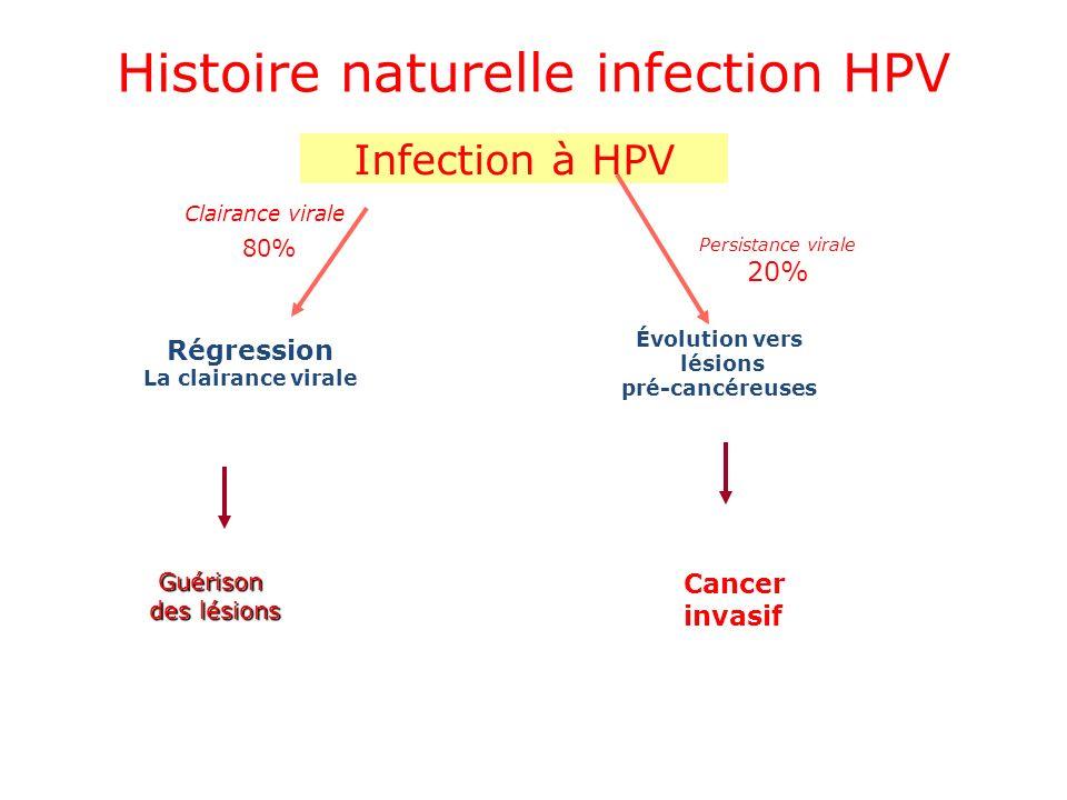 Infection à HPV Régression La clairance virale Évolution vers lésions pré-cancéreuses Cancer invasif 80% Clairance virale Persistance virale 20% Guéri