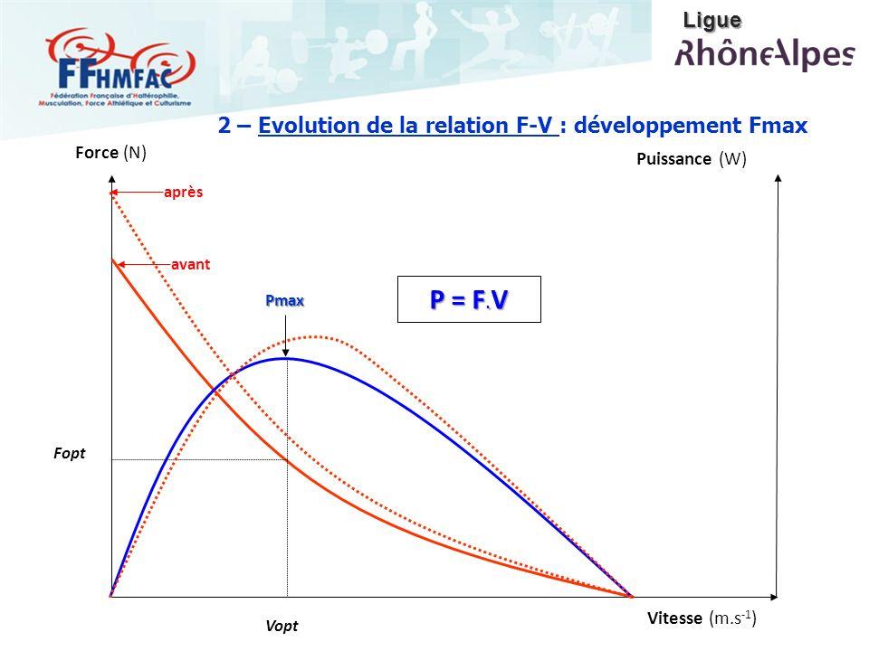 Force (N) Vitesse (m.s -1 ) Puissance (W)Pmax Vopt Fopt P = F. V avant après 2 – Evolution de la relation F-V : développement Fmax Ligue