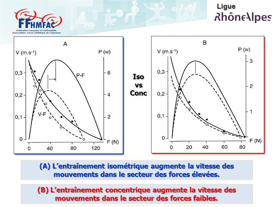 (A) Lentraînement isométrique augmente la vitesse des mouvements dans le secteur des forces élevées. (B) Lentraînement concentrique augmente la vitess