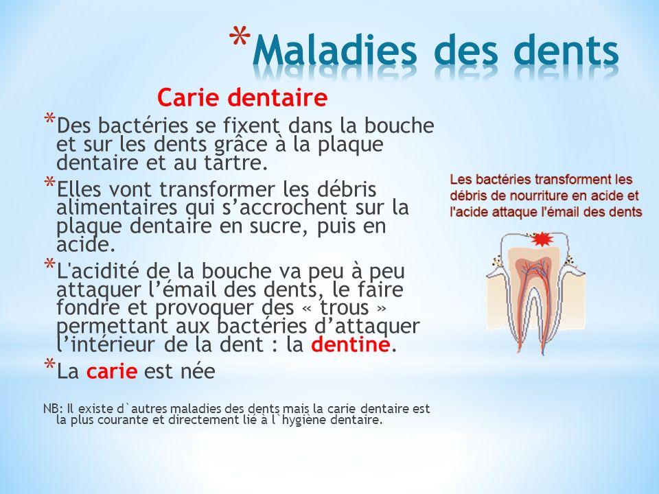 Carie dentaire * Des bactéries se fixent dans la bouche et sur les dents grâce à la plaque dentaire et au tartre. * Elles vont transformer les débris