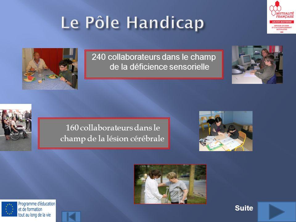 160 collaborateurs dans le champ de la lésion cérébrale 240 collaborateurs dans le champ de la déficience sensorielle Suite