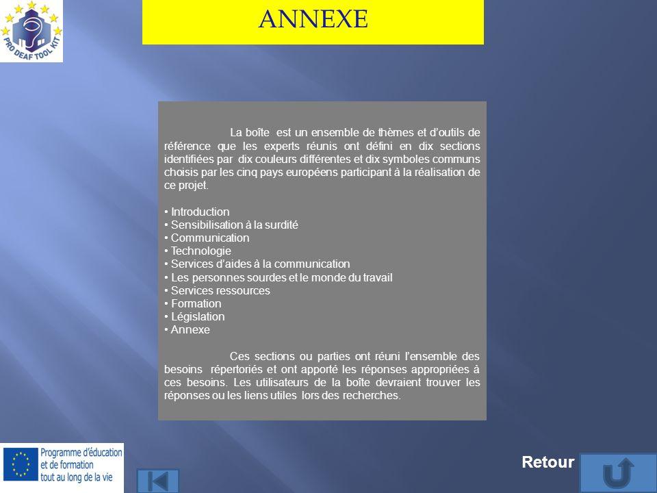 ANNEXE La boîte est un ensemble de thèmes et doutils de référence que les experts réunis ont défini en dix sections identifiées par dix couleurs diffé
