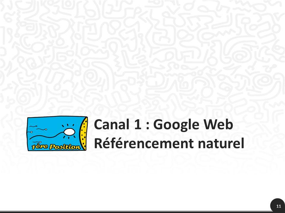 Canal 1 : Google Web Référencement naturel 11
