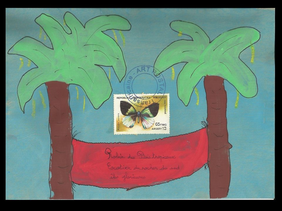 Chère Tortue verte, Je suis un coquillage, un bigorneau géant. Je voudrais te rendre visite dans ton magnifique lagon. Pourrais-tu venir à ma rencontr