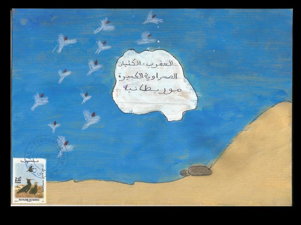 عزيزتي الآلة الموسيقية أنا سمكة جميلة أعيش في البحر الأبيض المتوسط لكنني أريد أن أسافر إلى موريطانيا، سأعبر المحيط و أنا لست معتادة العوم فيه. هل تقبل