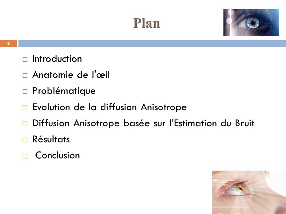 3 La « rétinopathie diabétique » (RD) est une des causes importantes du handicap visuel chez les diabétiques.