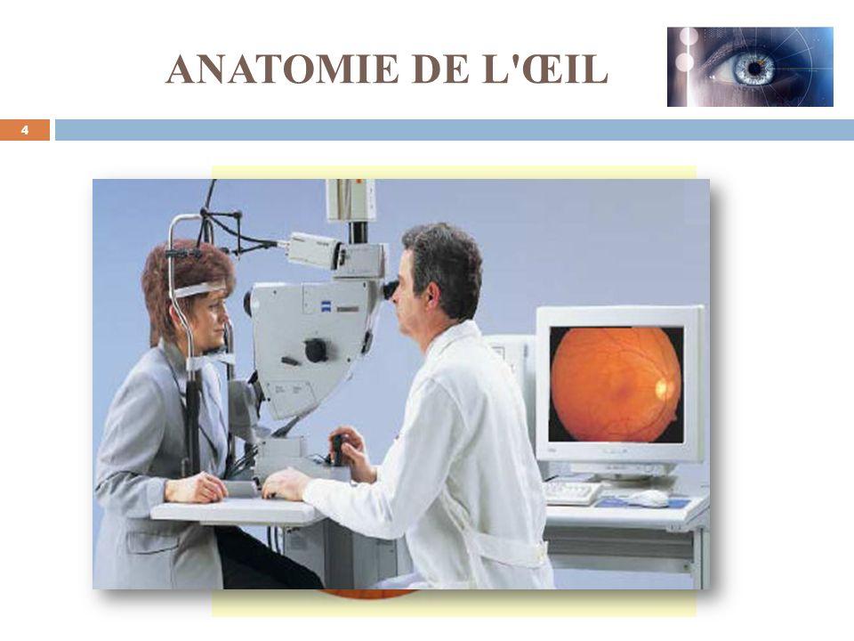 http://reference.medscape.com/features/slideshow/retina 5 Effets des maladies sur les vaisseaux sanguins INTRODUCTION