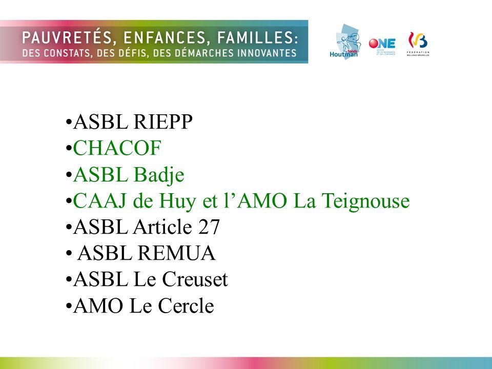 ASBL RIEPP CHACOF ASBL Badje CAAJ de Huy et lAMO La Teignouse ASBL Article 27 ASBL REMUA ASBL Le Creuset AMO Le Cercle