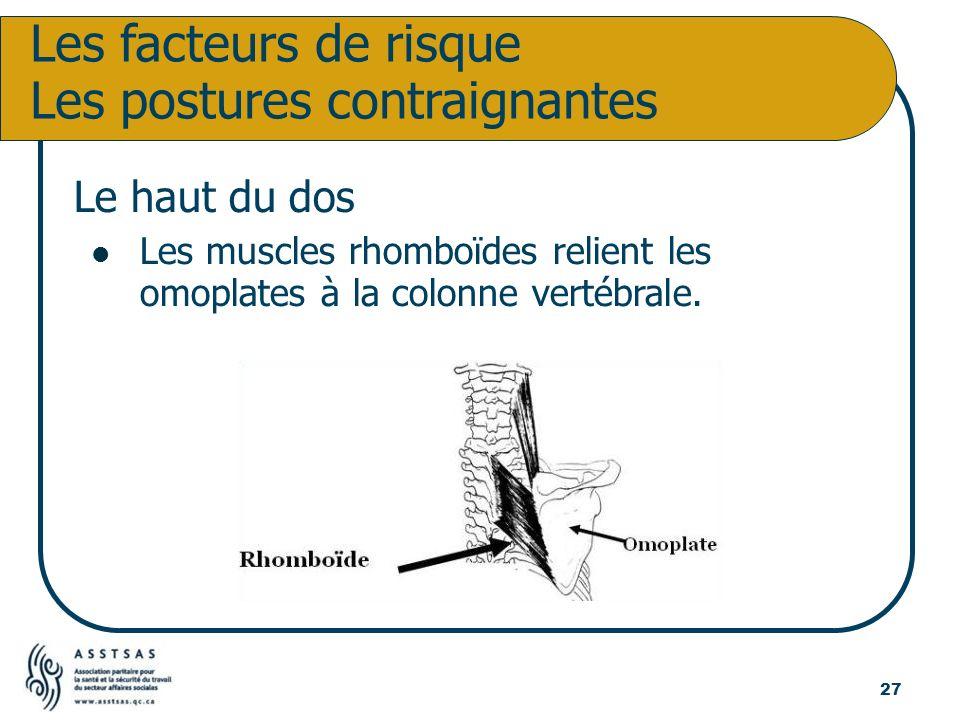 Le haut du dos Les muscles rhomboïdes relient les omoplates à la colonne vertébrale. Les facteurs de risque Les postures contraignantes 27