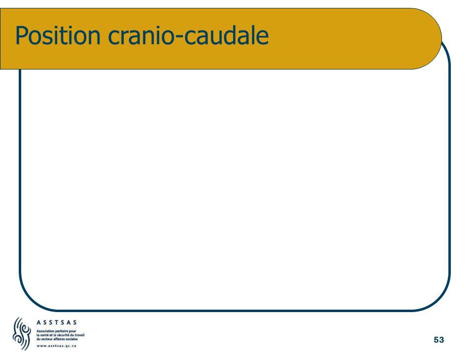 Position cranio-caudale 53